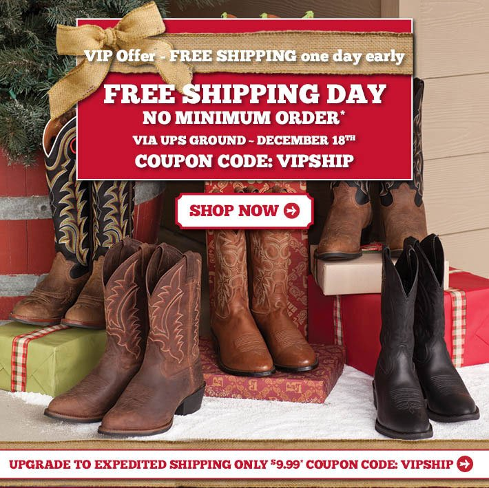 VIP Offer - Free Shipping Day