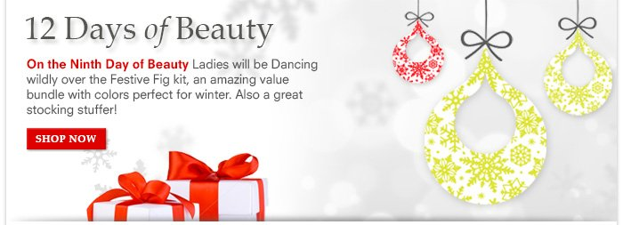 12 Days Of Beauty: Day 9 - Get Festive with Fig! Limited Edition Set, Amazing Value!