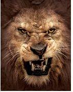 Big Face Roaring Lion T-Shirts