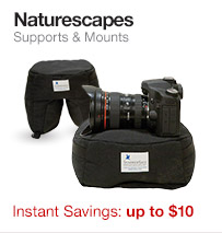 Naturescapes Beanbag