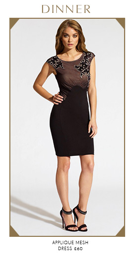 Applique Mesh Dress