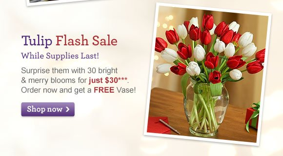 Tulip Flash Sale While Supplies Last! Surprise them with 30 bright & merry blooms for just $30*** Shop Now