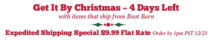 Get It By Christmas - 4 Days Left - Expedited Shipping Special $9.99 Flat Rate