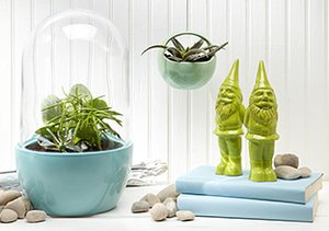 Vases & Terrariums by Chive
