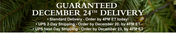 Guaranteed December 24th delivery.