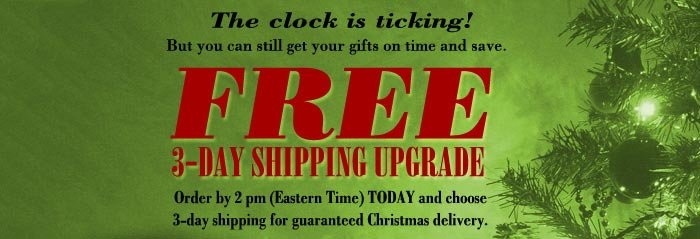 FREE 3-Day shipping upgrade!