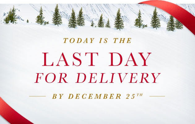 TODAY IS THE LAST DAY FOR DELIVERY BY DECEMBER 25th