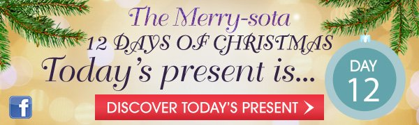 The Merry-sota 12 days of Christmas - Discover Today's Present