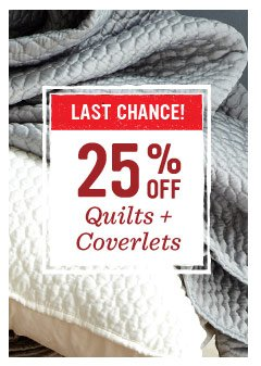 Last chance! 25% off quilts + comforters