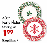 40ct Party Plates