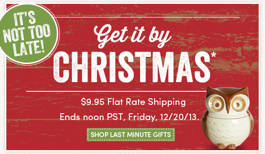 $9.95 Flat Rate Shipping for Last Minute Gifts
