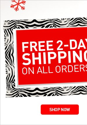 FREE 2-DAY SHIPPING ON ALL ORDERS* - SHOP NOW