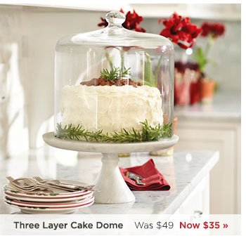 Southern Living Three Layer Cake Dome