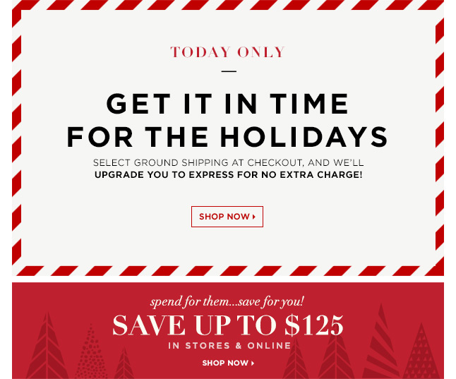 Now In-Store: Save Up To $125 On Your Entire Purchase! Plus, Today Only Receive Free Upgraded Shipping To Get It In Time For The Holidays!