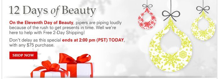 12 Days Of Beauty: Day 11 - Free 2-Day Shipping – Hurry, 12 Hours Only!