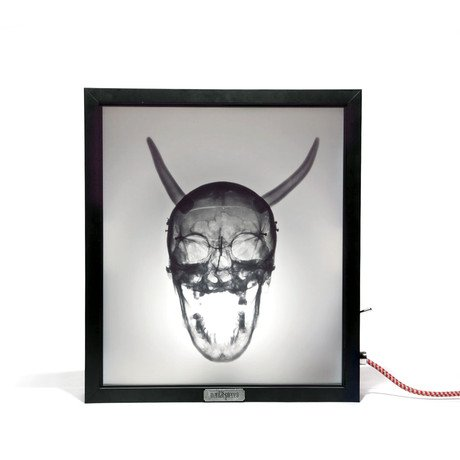 Mentalpieces X-Ray Lightbox // Corporate Evolution