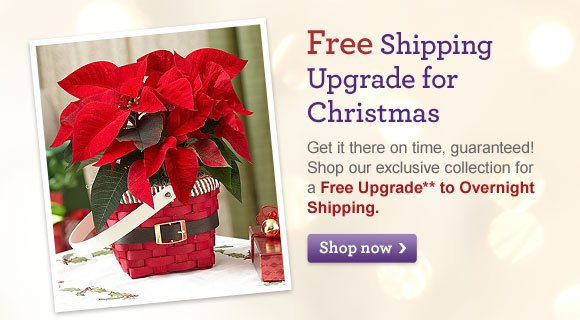 Free Shipping Upgrade for Christmas Get it there on time, guaranteed! Shop our exclusive collection for a Free Upgrade** to Overnight Shipping. Shop Now