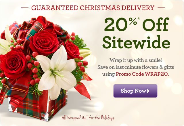 Guaranteed Christmas Delivery! 20%* Off Sitewide  Wrap it up with a smile! Save on last-minute flowers and gifts using Promo Code WRAP20.  Shop Now