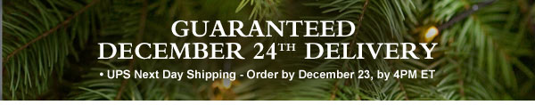 GUARANTEED DECEMBER 24TH DELIVERY  UPS Next Day Shipping - Order by December 23, by 4PM ET