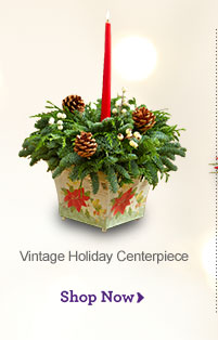 Vintage Holiday Centerpiece Shop Now