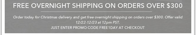 Free Overnight Shipping on Orders Over $300