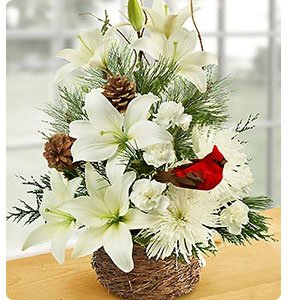 Wintertime Bird's Nest of Flowers Shop Now