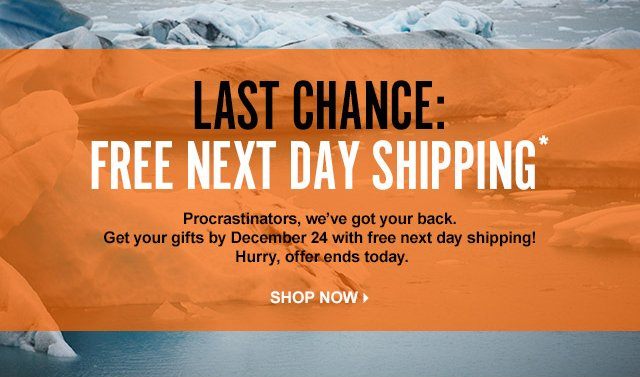LAST CHANCE: FREE NEXT DAY SHIPPING*