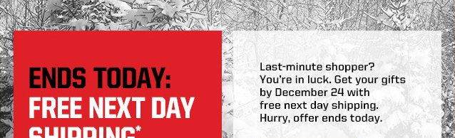 FREE NEXT DAY SHIPPING* THROUGH SUNDAY