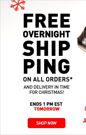 FREE OVERNIGHT SHIPPING ON ALL ORDERS* - SHOP NOW