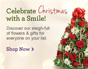 Celebrate Christmas with a Smile! Shop Now