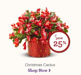 Regal Opulence Basket - Save 40% Make it a holiday fit for a king! Shop Now
