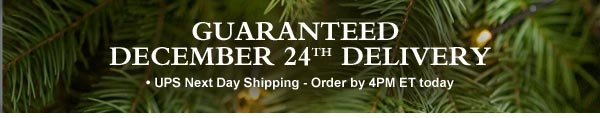 Guaranteed December 24th Delivery - UPS Next Day: Order by 4PM ET Today