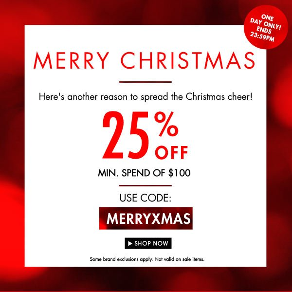 Merry Christmas! Here's 25% off your shopping!