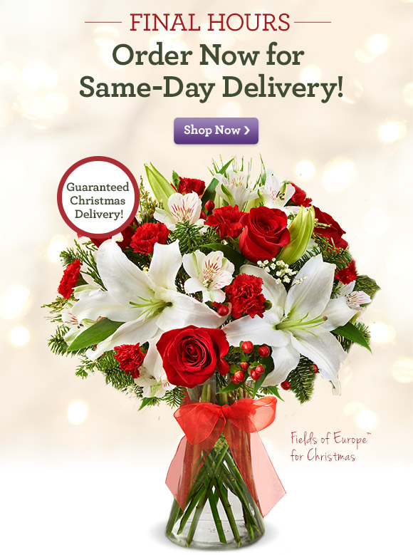 FINAL HOURS Order Now for Same-Day Delivery! Shop Now