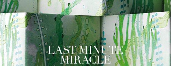 Last Minute Miracle