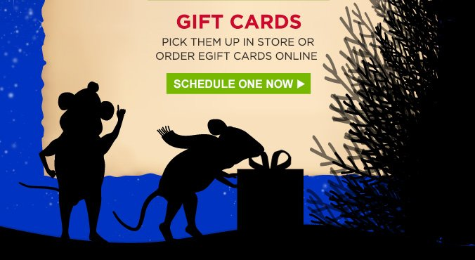 GIFT CARDS | PICK THEM UP IN STORE OR ORDER EGIFT CARDS ONLINE | SCHEDULE ONE NOW