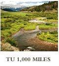 TU 1,000 Miles