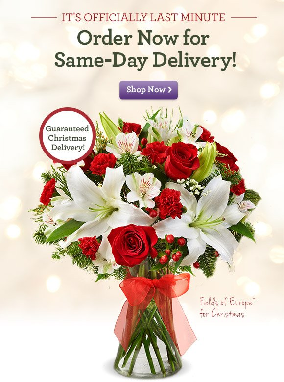 It's Officially Last Minute Order Now for Same-Day Delivery! Shop Now