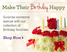 Birthday Shop Now