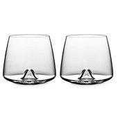 Whiskey Glass Set of 2