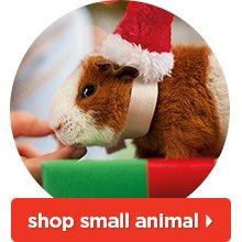 Shop small animal