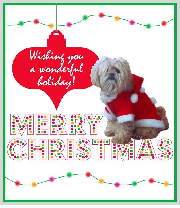 Roxy says Merry Christmas!