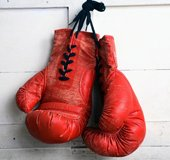 Boxing Gloves_NLsm