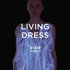 Living Dress Moving Questions