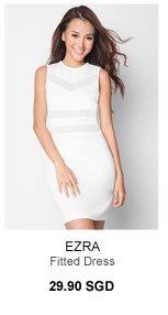 EZRA Mesh Insert Fitted Dress