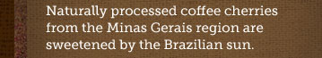 Naturally processed coffee cherries from  the Minas Gerais region are sweetened by the Brazilian sun.