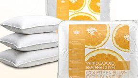 Canadian Down & Feather Duvets