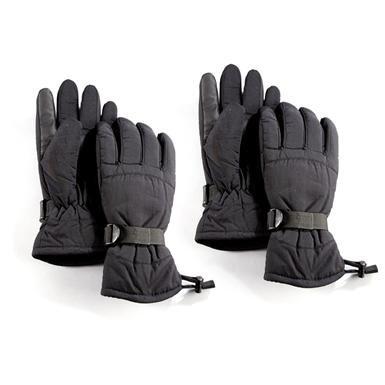 2-Prs. of Jacob Ash® 40-gram Thinsulate™ Ski Gloves