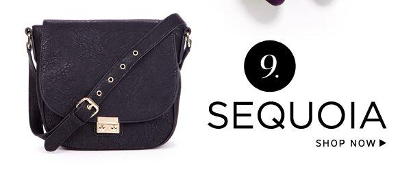 Best of 2013: Shop Sequoia
