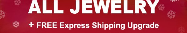 EXTRA 30% OFF ALL JEWELRY + FREE Express Shipping Upgrade + Special Discount Coupon